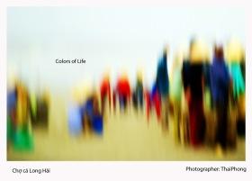 Sắc màu cuộc sống - Colors of Life