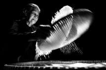 Sàn Gạo - Ảnh triển lãm, Liên hoan ảnh nghệ thuật Đông Nam Bộ 2012 Gắn thẻ ảnhThêm địa điểmChỉnh sửa