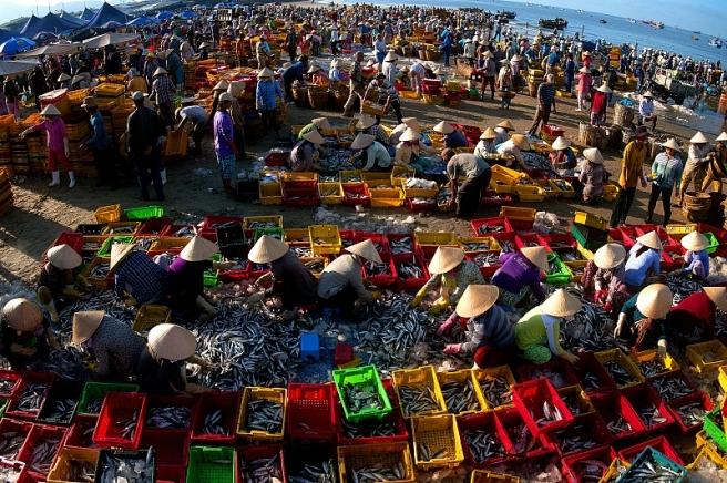 Chợ cá Long Hải - [Màu » Màu tự do] Ảnh triển lãm Gia Định 2014