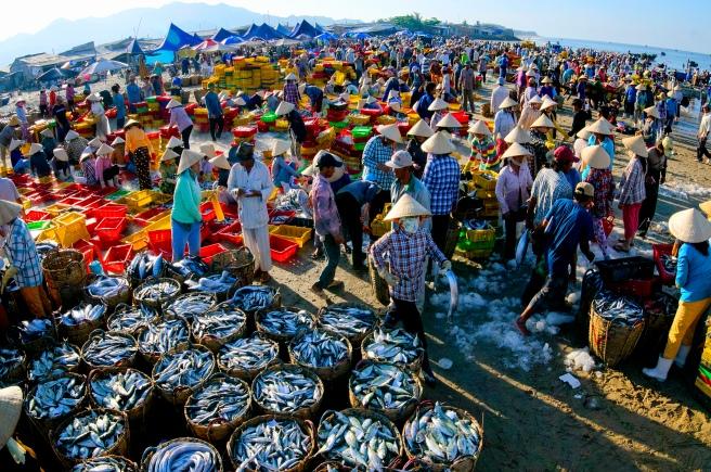 Nhộn Nhịp Chợ Cá Long Hải - Ảnh triễn lãm Xuân Hopa 2017